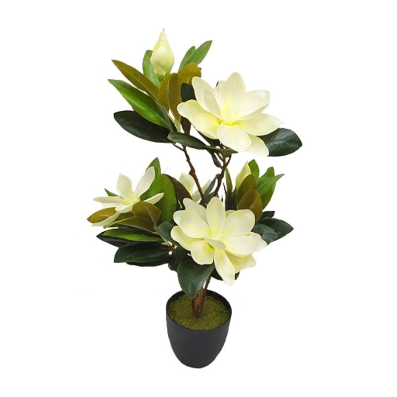 Magnolia artificial en maceta 65cm blanco tiendas mgi - Magnolia planta cuidados ...