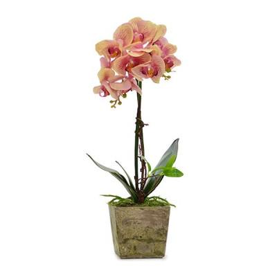MACETA ORQUIDEA ARTIFICAL. COLOR BEIS Y FUCSIA