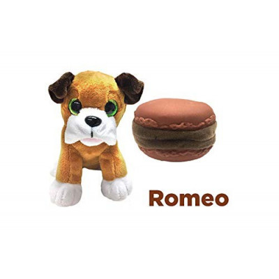 SWEET PUPS SURPRISE - ROMEO
