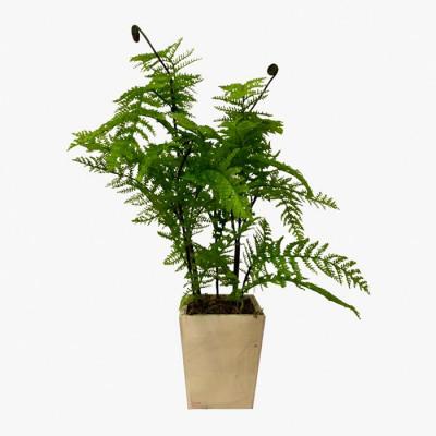 PLANTA ARTIFICIAL 50CM CON...