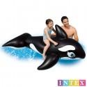 ORCA HINCHABLE 193x119CM