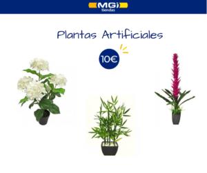 accesorios para vestidores plantas