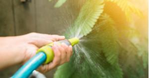 limpiar plantas artificiales para decorar
